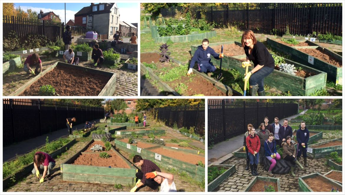 Community Garden Project in Cross Green | TKP